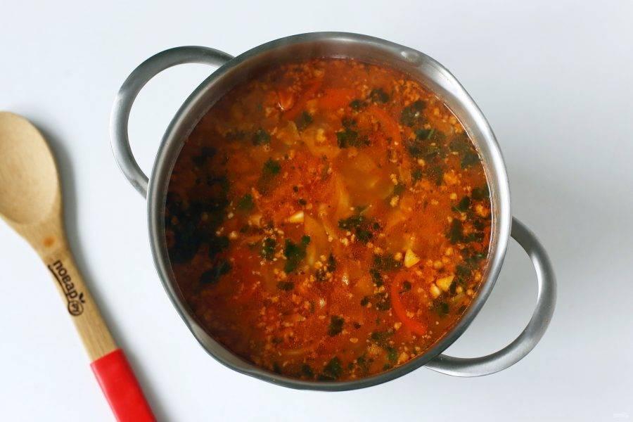 В самом конце добавьте зелень и измельченный чеснок. Чехославацкий суп с фаршем готов.