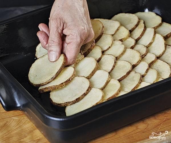 6. Жаропрочную форму смажьте маслом. Выложите на дно кружочки обжаренного картофеля.