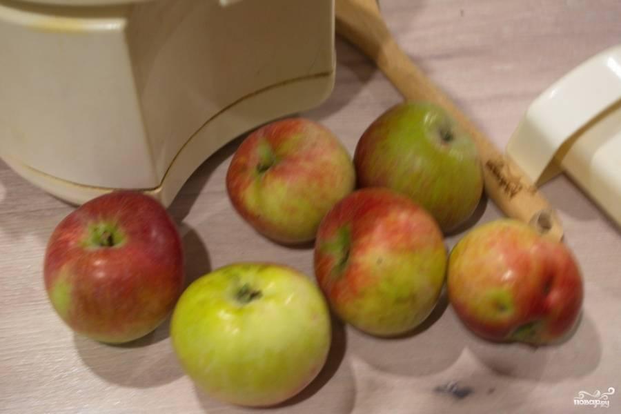 Яблоки нарежьте на удобные кусочки. Моя соковыжималка позволяет не слишком чистить яблоки. Фильтр и контейнер для жмыха достаточно крупный. Яблоки следует нарезать по размеру отверстия в соковыжималке.