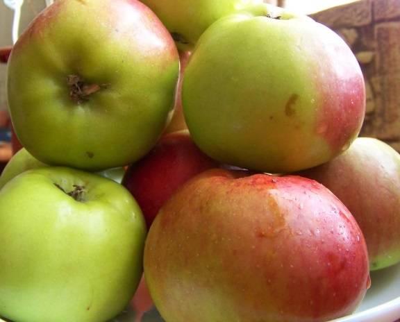 Для варенья подойдут яблоки и зрелые и недозрелые.