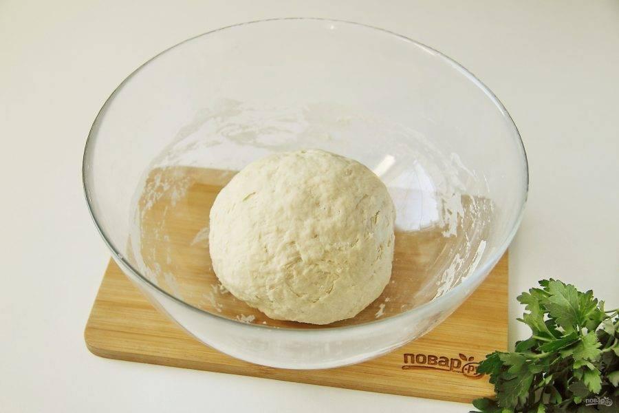 Перемешайте все сначала ложкой, затем подсыпая оставшуюся муку, замесите руками эластичное тесто. Соберите его в шар, накройте и оставьте на 20 минут.
