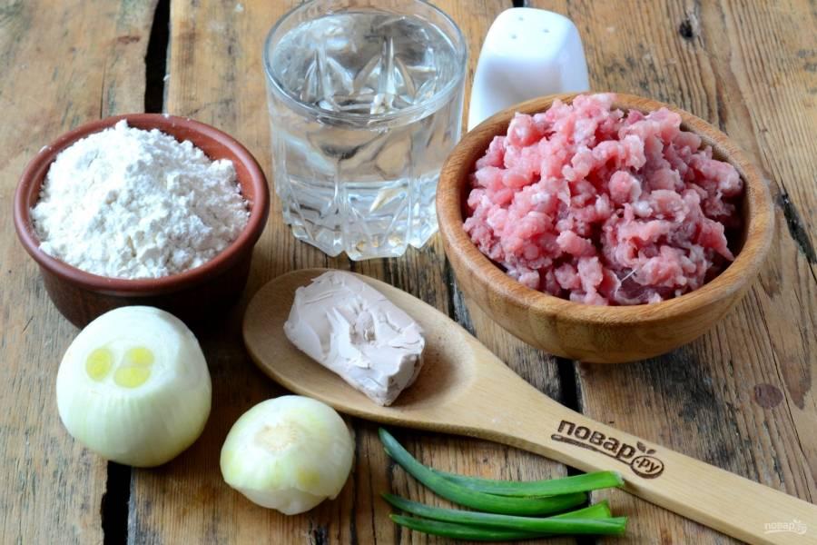 Подготовьте все необходимые ингредиенты. Мясо пропустите через мясорубку или мелко порубите ножом.
