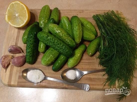 Тщательно помоем огурчики и зелень укропа, очистим чеснок.