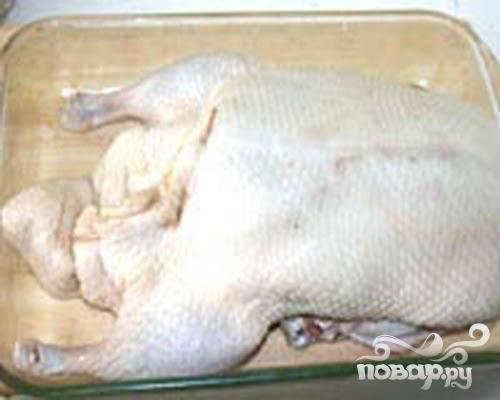 3.Брюшко утки аккуратно зашиваем. Тушку надо теперь смазать медом, солью и перцем. Четвертинки нарезанного картофеля раскладываем вокруг  тушки. Когда все готово, отправляем в разогретый духовой шкаф.