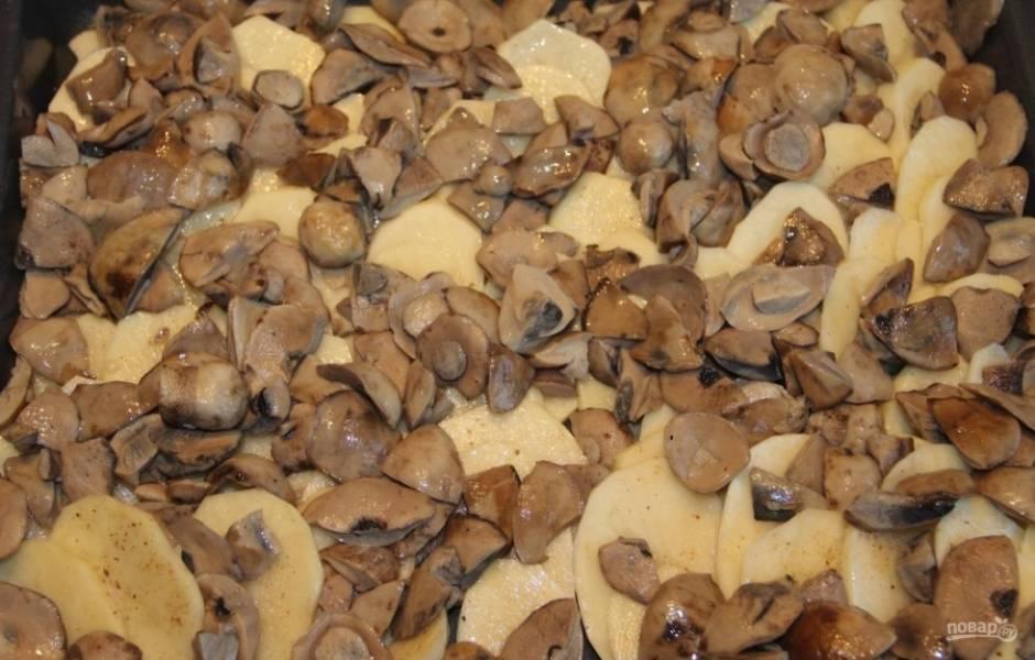 2.Грибы отвариваю до готовности, после чего нарезаю их кусочками и выкладываю поверх картошки.