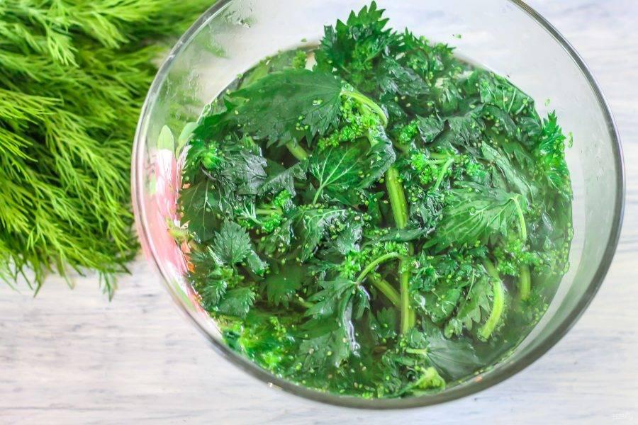 Крапиву аккуратно промойте в воде и выложите в глубокую емкость. Вскипятите воду и залейте зелень кипятком, оставляя ее в нем на 2-3 минуты. Благодаря такой обработке, крапива не будет жечь.