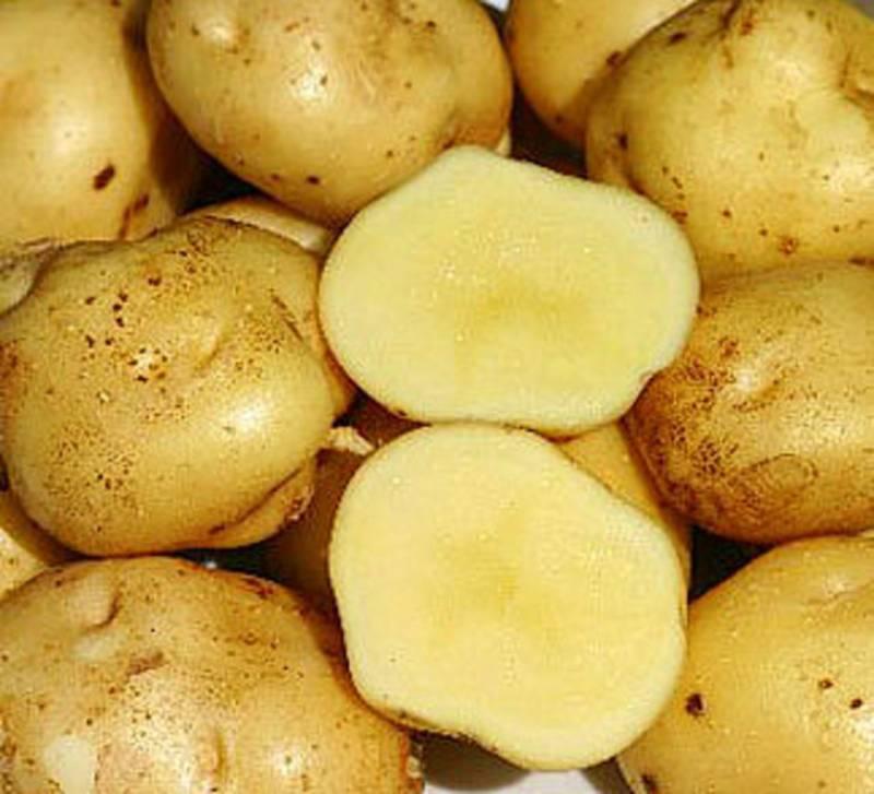 Варим картошку в мундире. Чистим от кожуры, режем на кубики.