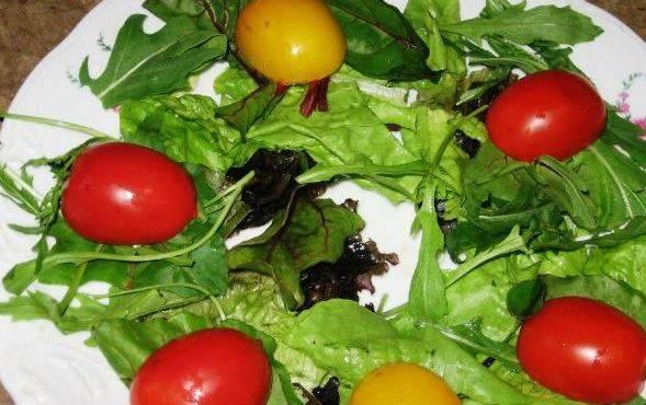На тарелку выкладываем салат (крупные листья рвем руками), кладем помидоры черри и поливаем заливкой.