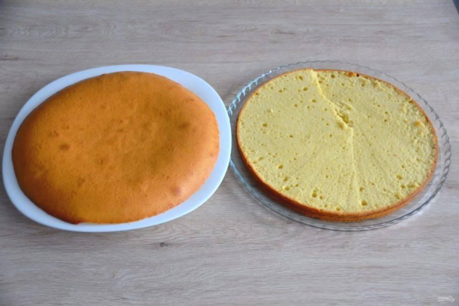 Готовый корж остудите, разрежьте на две части. Верхнюю часть коржа срежьте для приготовления крошки.