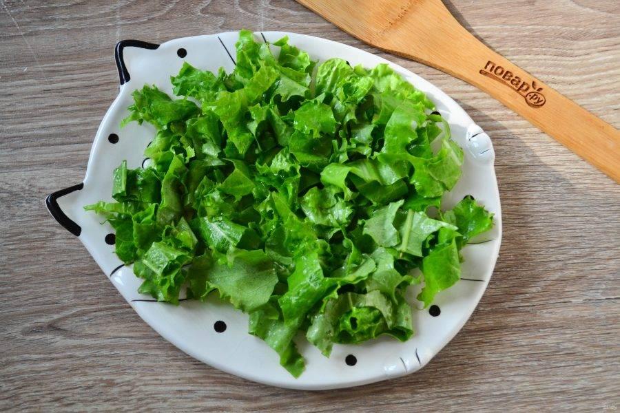 Салат промойте, порежьте листья на небольшие куски, можно также порвать руками. Выложите салат на плоскую тарелку.