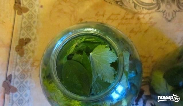 1. Огурцы помоем, срежем у них попки. Заливаем рассолом, для этого просто разведите соль в воде. Пусть под гнетом стоят 2 дня. Дальше раскладываем их по стерильным банкам, перекладывая листьями и зубчиками чеснока. Специи вроде перца или паприки добавляйте по вкусу.