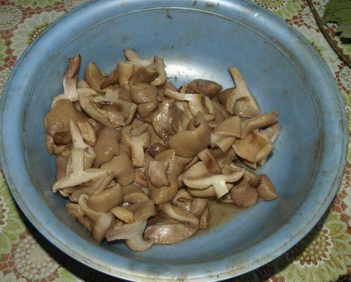 Маслята чистим и отвариваем в подсоленной воде, за несколько минут до окончания добавьте чуть уксуса, чтобы грибы не темнели. Отваренные грибы откиньте на дуршлаг.
