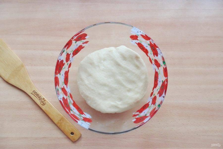 Замесите мягкое, не липнущее к рукам тесто. Выложите в миску и отправьте в теплое место для подъема.