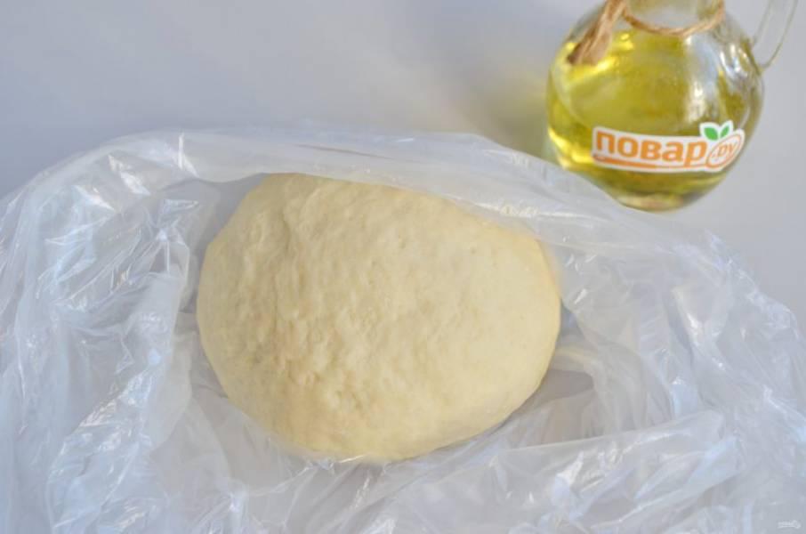 3. Замесите мягкое пластичное тесто, оставьте его в пакете на 30 минут отдохнуть.