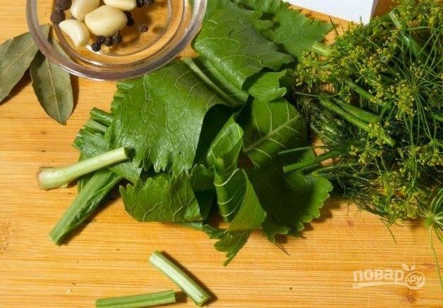 2. Нарежьте зелень, очистите чеснок и помойте тщательно помидоры. Подготовьте банки и заранее простерилизуйте их.