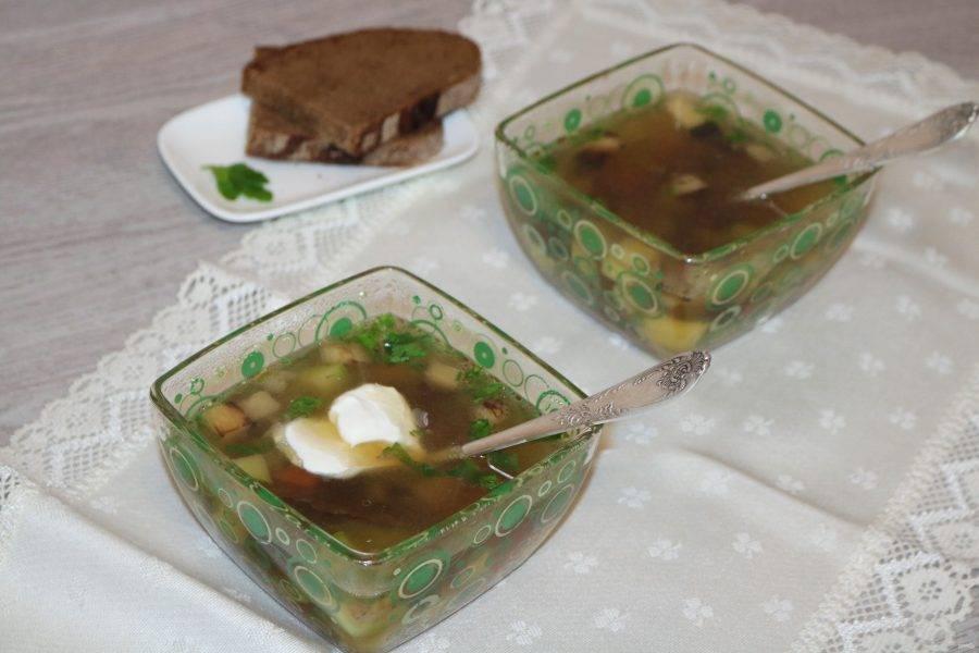 Разлейте суп по тарелкам. Подавайте со сметаной.