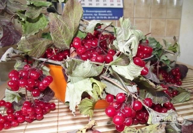 1. Для этого рецепта понадобится всего 2 ингредиента: ягоды калины и сахар. Количество — из расчета 1 к 1.