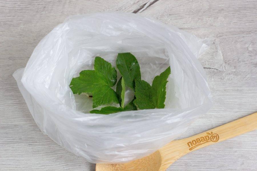 Возьмите 2 пакета и вложите один в один, для надежности. На дно пакета положите листья смородины и вишни.