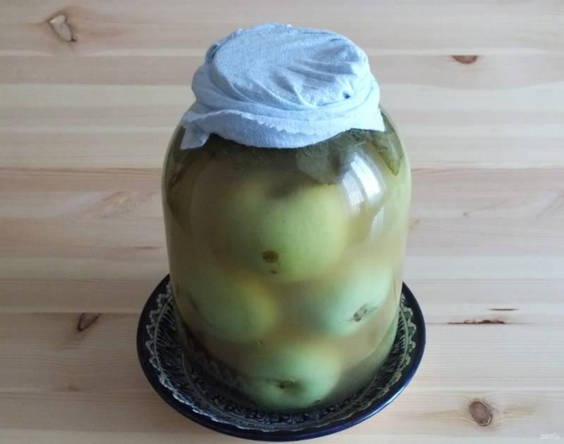 Через 4 дня рассол заметно помутнеет и начнется газообразование. Это самое время вынести банку с яблоками на холод, где она пробудет 2 месяца.