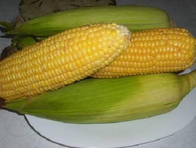 1. Для начала необходимо правильно выбрать початки, чтобы кукуруза на зиму без стерилизации в домашних условиях не была жесткой. Лучше всего использовать свежие, недавно сорванные, чтобы кукуруза не была крахмальной. Початки необходимо тщательно очистить и как следует вымыть.