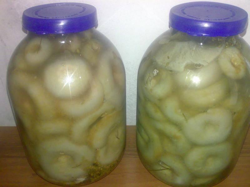 На следующий день закладываем грибы в стерилизованные баночки. Чеснок - слой грибов - 1 ч.л. соли - чеснок - грибы - соль. Сверху заливаем рассолом, в котором были грибы. Утрамбовываем, кладем листья хрена, укроп. Закрываем крышками и храним в холодильнике. Через месяц грибы готовы, приятного аппетита!