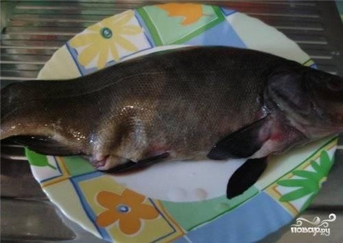 У линя очень мелкая чешуя, но чистить ее не надо! Сделайте для рыбы контрастное купание - сначала окуните его на несколько минут в горячую воду, а потом в холодную. Затем выпотрошите рыбу и разделайте на кусочки.