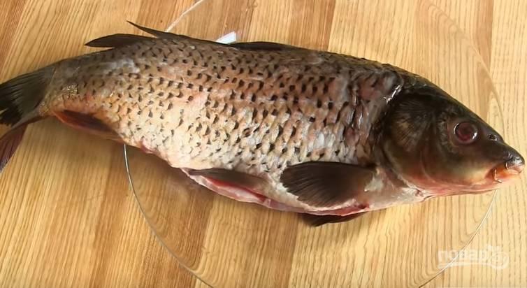 1. Рыбу надо очистить от чешуи, выпотрошить, удалить жабры и вымыть.