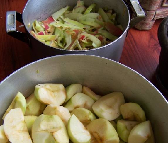 Фрукты тщательно промываем и очищаем: яблоки - в одну емкость, а очистки - в другую.
