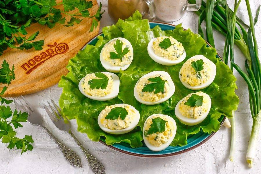 Выложите фаршированные яйца на листья салата и украсьте свежей зеленью перед подачей.