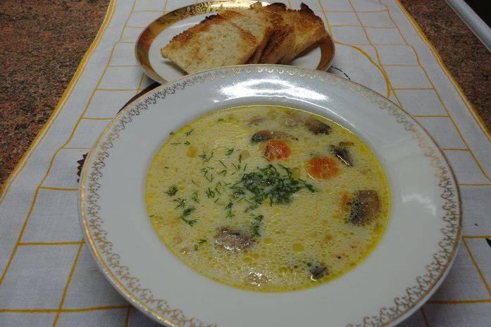 Кладем овощи с грибами в кастрюлю, доводим до кипения и добавляем плавленный сыр. Проверяем суп на соль, перемешиваем, доводим еще раз до кипения. Снимаем суп с плиты, он должен настояться 10 минут под крышкой. К столу подаем, украсив зеленью и гренками. Приятного аппетита!