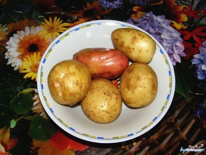 Моем картофель. Можно очистить от кожуры, а можно и не очищать. У меня картошка со своего огорода, без пестицидов:)