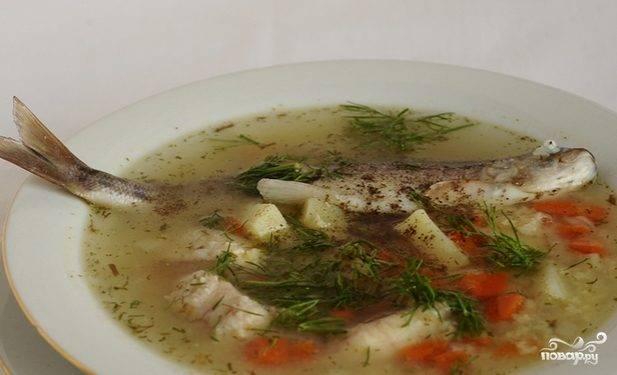Суп из речной рыбы
