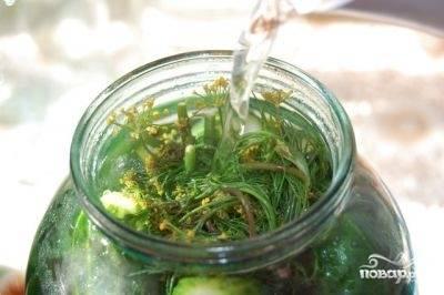 В холодной воде растворить соль и сахар, добавить водку. Залить маринад в банку и плотно закрыть пластиковой крышкой.