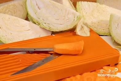 Капусту помойте, разрежьте каждый кочан на 4 части. Чеснок и морковь почистите. Морковь нарежьте кружочками. Перец помойте, удалите плодоножки, сельдерей разрежьте на 4 части. Свеклу помойте, почистите и нашинкуйте пластинками.