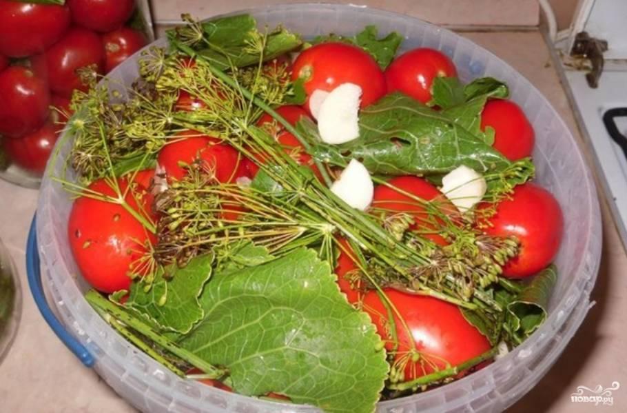 После томатов снова кладем чеснок, листья и т. д. Повторяем слой помидоров и накрываем сверху листьями.