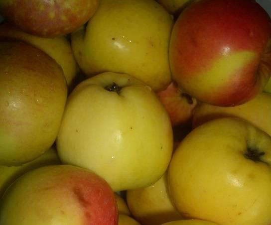 Яблоки тщательно промойте под холодной водой.