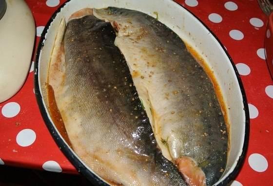 Затем переворачиваем горбушу мякотью вниз, закрываем миску плотно пищевой пленкой и ставим в холодильник на 2-3 дня. По истечении времени рыбу необходимо промыть под проточной водой и повесить на крючки сушиться на ночь.