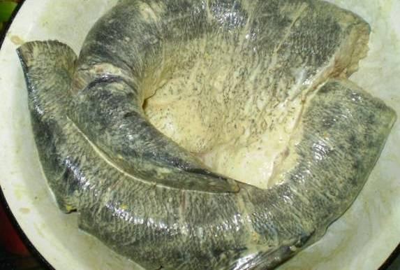 1. Толстолобик необходимо вымыть, очистить от чешуи и внутренностей, удалить плавники, голову и хвост. Посолить и поперчить по вкусу. Смазать сметаной и при желании присыпать молотым кориандром для аромата. Также можно добавить розмарин, свежую зелень и другие приправы для рыбы.  Рецепт приготовления толстолобика в духовке в фольге предполагает предварительное маринование рыбки. Оставить ее нужно минимум на 30 минут, а в идеале она должна пролежать в маринаде около двух часов.