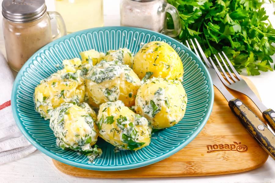 Картофель со сметаной и зеленью