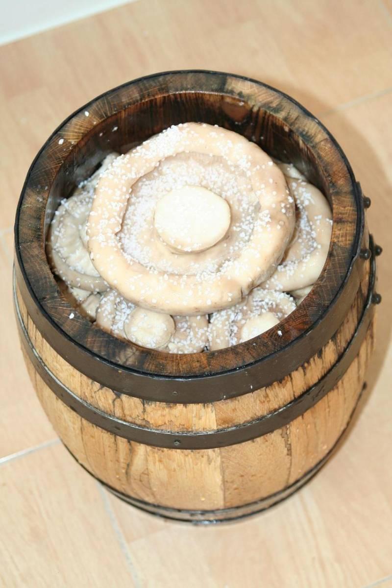 Дно бочки посыпаем слоем соли, выкладываем грибы рядками шляпками вниз, пересыпая солью. Также закладываем листья дуба и смородины, укроп и перец горошком. Сверху кладем деревянный круг, а на него ставим что-то тяжелое. Через 5-7 дней грибы осядут и выступит рассол, его нужно чуть отлить и добавить еще грибов. Так делаем несколько раз, после чего закупориваем бочку и храним в холодном месте.