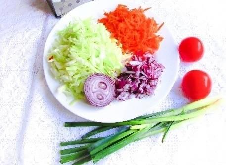 1. Первым делом налейте в кастрюлю воду (около 2 литров), поставьте её на огонь. Пока вода закипает, очистите лук, нарежьте его мелким кубиком, на средней терке натрите морковь и нашинкуйте капусту.