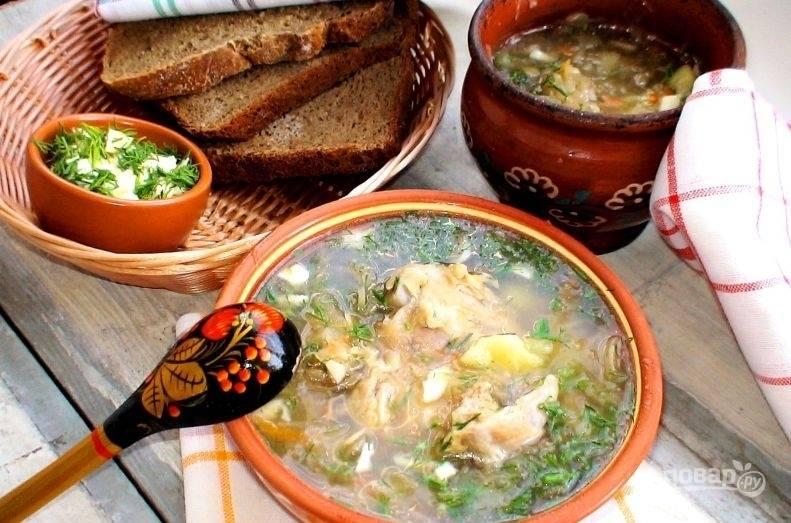 В готовые щи добавьте мелко нарубленную зелень и чеснок. Приятного аппетита!