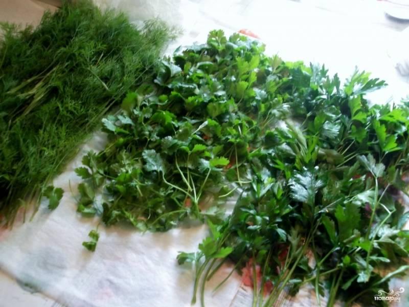 Зелень вымыть, мелко порезать и слегка помять.