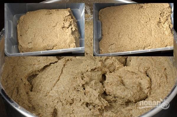 6. Добавьте в опару пюре, соль, сахар, тмин, воду, муку. Замесите тесто, оставьте в тепле (32-34 градуса) на 1.5-2 часа.