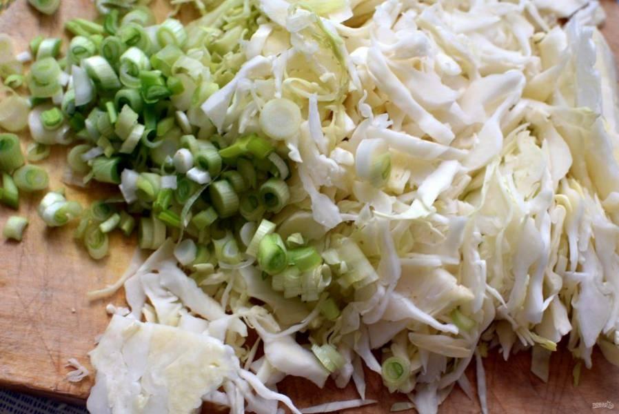 Тонко нашинкуйте капусту и среднюю часть зеленого лука.