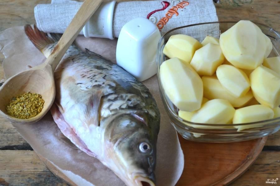 Подготовьте все необходимые ингредиенты. Картофель очистите и промойте. Сазан очистите от чешуи, удалите жабры и внутренности, хорошенько промойте.