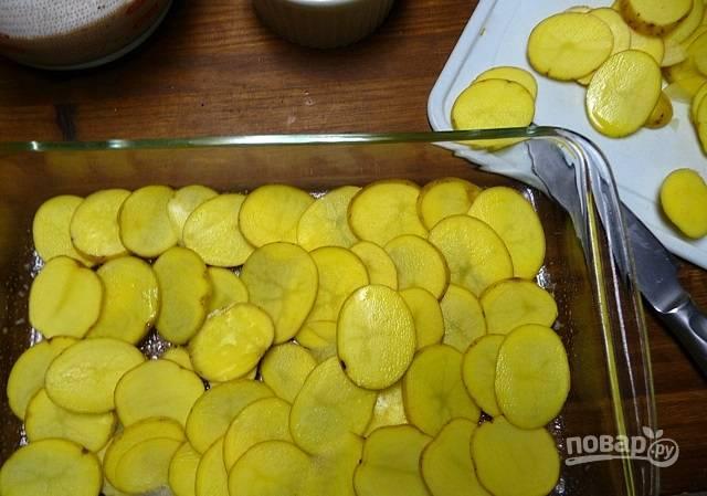 4. Подготовьте жаропрочную форму. Дно смажьте растительным маслом. Выложите слой картофеля на дно.