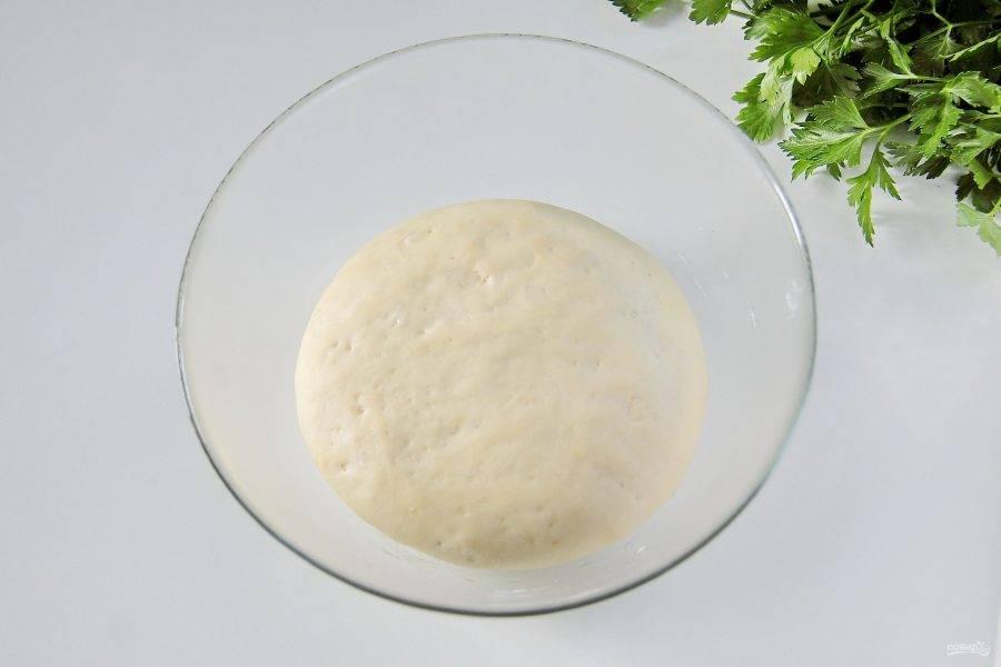 Накройте тесто полотенцем и уберите в теплое место примерно на час. За это время оно должно хорошо увеличиться в размере.