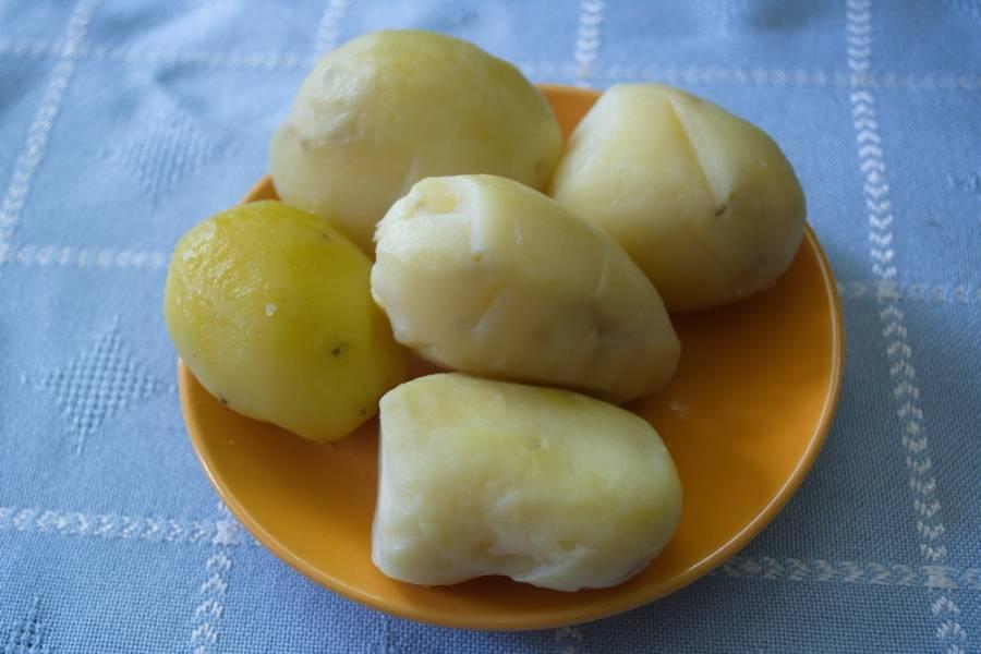 Картофель отварной очистить. Нарезать кольцами. Не слишком важно теплый картофель или нет. Единственное - горячий картофель крошится.