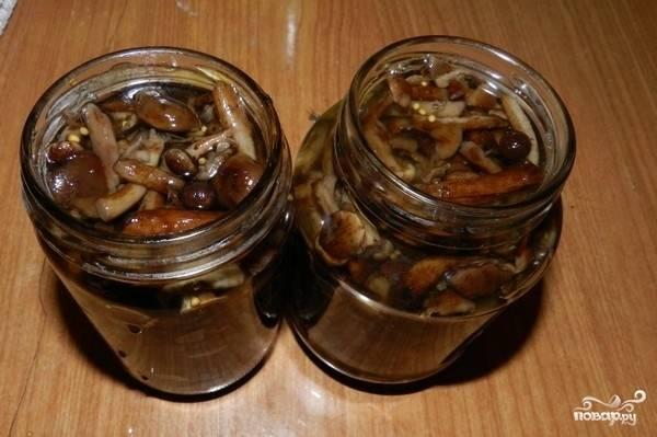 Выложить опята вместе с маринадом в стерильную литровую банку, закрыть крышкой и поставить в холодной место.